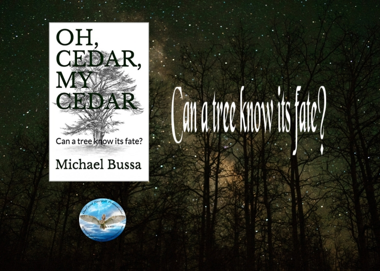 Michael oh cedar blurb.jpg
