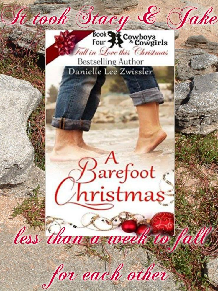 Barefoot Christmas promo Danielle Zwissler