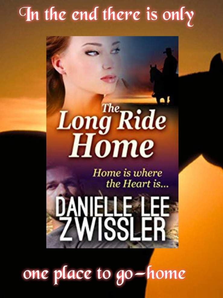 Long Ride Home promo Danielle Zwissler