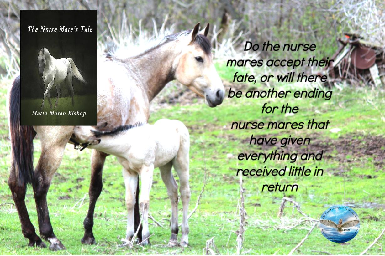 Marta the nurse mares tale 7-2019.jpg
