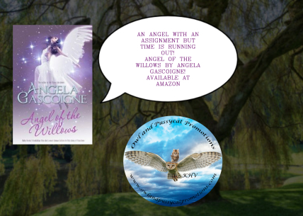ANGELOFTHE WILLOWS (1).jpg