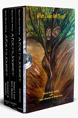 A Poet's Journey Boxed Set
